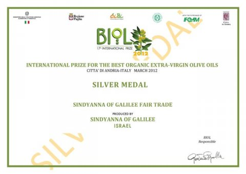silver_medal_2012_2_pS8